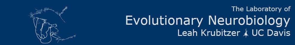 Evolutionary Neurobiology