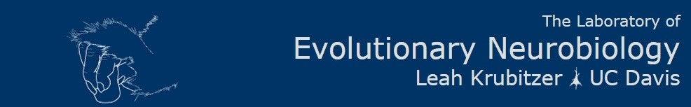 Evolutionary Neurobiology